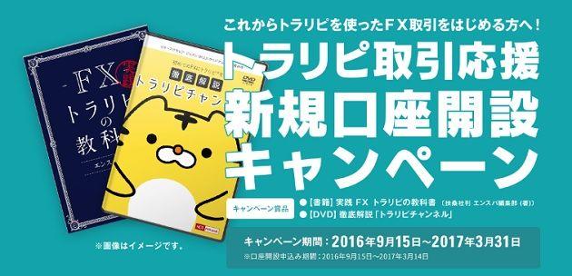 m2j-campaign